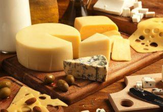 Производство сыров. Виды сыра