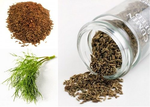 Укроп и тмин – влияние на организм