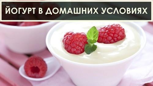 йогурт в домашних условиях фото